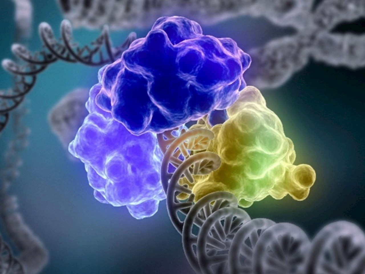 Scientists have figured out how to use a cell's DNA repair mechanisms